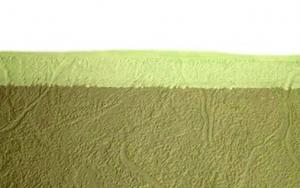 Окрашивание флизелиновых обоев